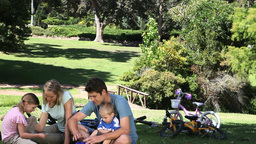 Family sitting while talking in a park Footage