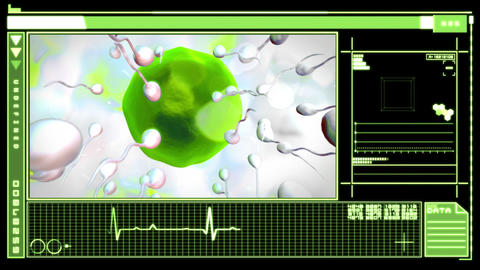 Medical digital interface showing egg cell fertili Stock Video Footage