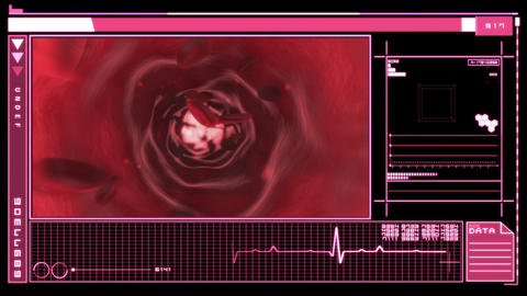 Digital interface showing bloodflow Animation