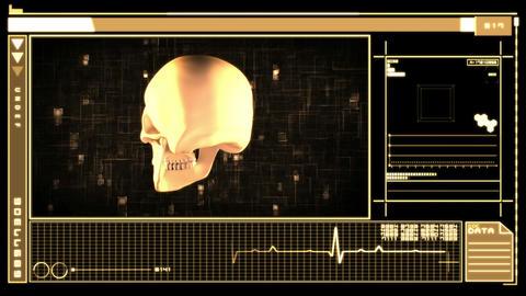 Digital Interface Showing Skull stock footage