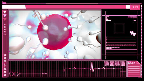 Interface showing digital fertilization of egg Animation
