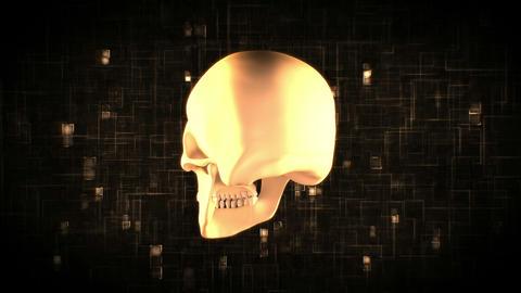 Revolving skull on moving digital background Animation