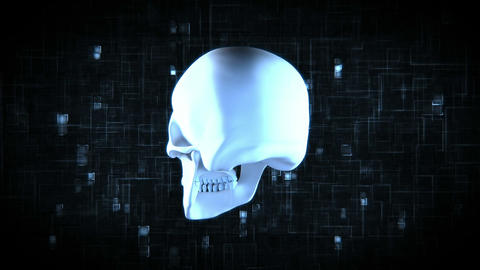 Revolving blue skull on moving digtial background Animation