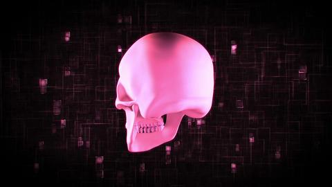 Revolving pink skull Animation