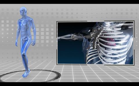 Revolving running skeleton being scanned Animation