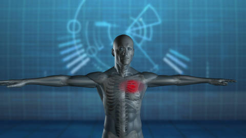 Revolving Figure Of Man With Highlighted Heart stock footage