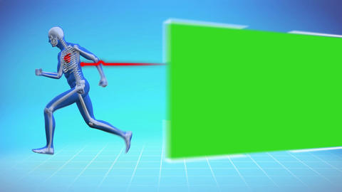 Skeleton running next to chroma key Animation
