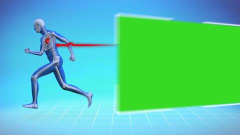 Skeleton running next to chroma key Animation