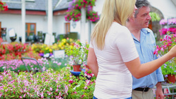 Couple choosing plants while assistant is helping Footage