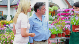 Couple choosing plants while assistant is helping Stock Video Footage