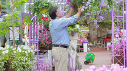 Man looking at hanging basket and smelling flowers Footage