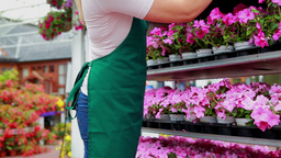 Woman standing at a flower shelf Footage