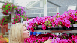 Woman working at the garden centre at the flower s Footage