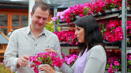 Man and woman standing in front of a flower shelf Footage