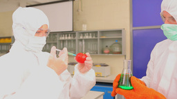 Students injecting green liquid in a tomato Footage