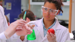 Student injecting tomato with green liquid in lab Footage