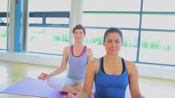 Smiling women sitting on yoga mats Footage