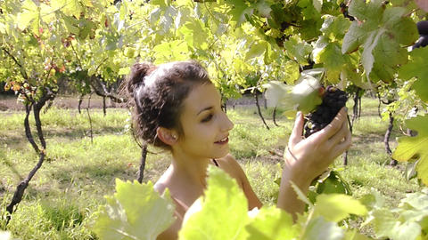 a girl in a vineyard dolly shot Footage