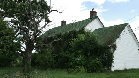 1975 Old Farm House Being Taken Over by Nature, HD Footage