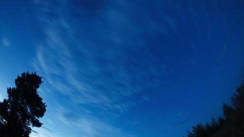Night sky ビデオ