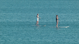 Women Stand Up Paddle Boarding in the Ocean Stock Video Footage