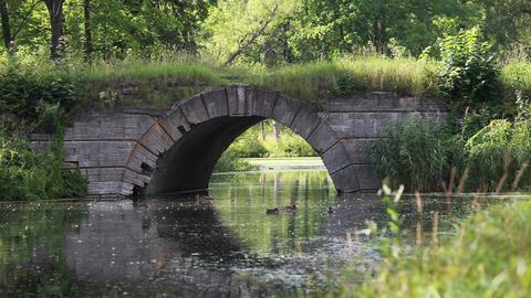 old bridge Footage