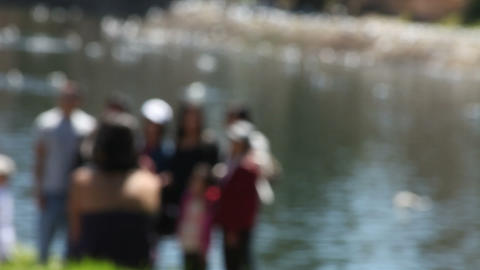 group by a lake defocused Stock Video Footage