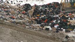 HD2008-12-8-4 landfill garbage truck Footage
