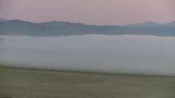 HD2008-7-1-2 sunrise fog cows Footage
