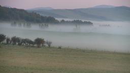 HD2008-7-1-4 sunrise fog Stock Video Footage