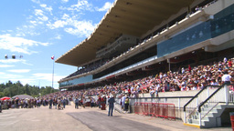 HD2008-7-3-4 Stampede grandstand Stock Video Footage