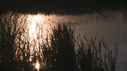 HD2008-6-7-54 sun reflection pond evening Stock Video Footage