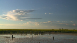 HD2008-7-7-2 pond canola field evening Stock Video Footage