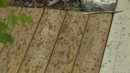 HD2008-7-9-3 TL rain fall on deck Stock Video Footage