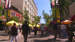 HD2008-7-9-25 people on mall Stock Video Footage