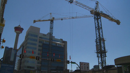 HD2008-7-9-27 cranes Stock Video Footage