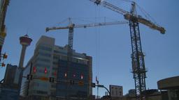 HD2008-7-9-27 cranes Stock Video Footage