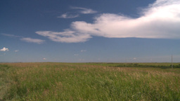 HD2008-7-10-5 wild grass blowing in wind clouds Stock Video Footage