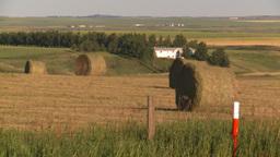 HD2008-7-14-41 hay bales Footage