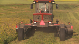 HD2008-7-14-47 tractor harvesting timothy hay Stock Video Footage