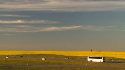 HD2008-7-14-59 canola fields highway Footage