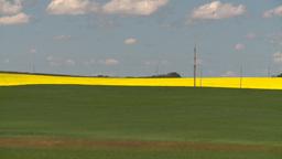 HD2008-7-15-52 canola fields wheat Stock Video Footage