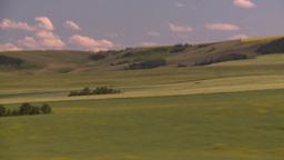 HD2008-7-16-20 wheat drive Stock Video Footage