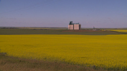 HD2008-7-16-60 canola fields grain elevators Stock Video Footage