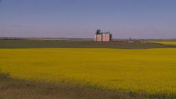 HD2008-7-16-60 canola fields grain elevators Stock Video Footage