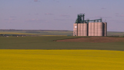 HD2008-7-16-62 canola fields grain elevators Footage