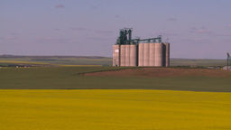 HD2008-7-16-64 canola fields grain elevators Footage