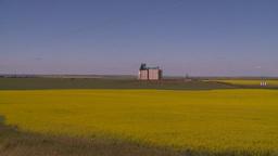 HD2008-7-16-64 canola fields grain elevators Stock Video Footage