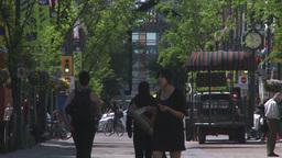HD2008-6-2-11 people on mall Footage