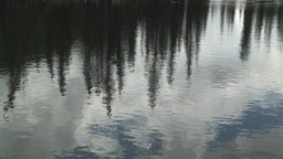 HD2008-6-3-36 pond forestreflection Stock Video Footage